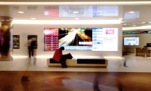 CDS - Scotia Plaza web
